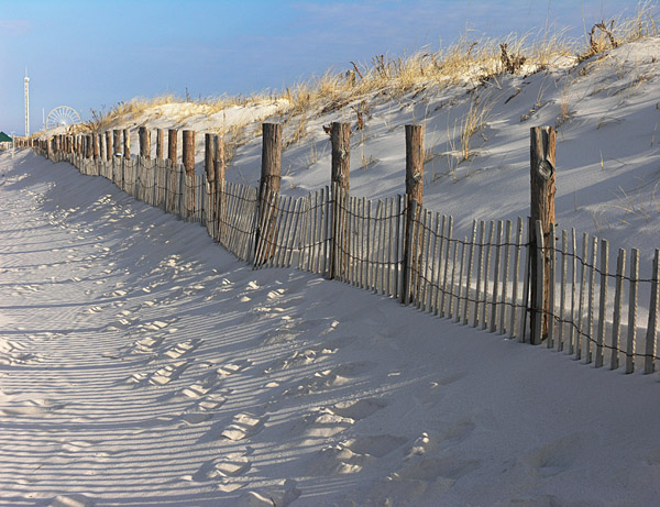 Dunes with fence shadows, Seaside Park, NJ