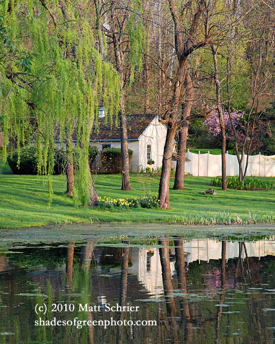 Pond Reflection, New Hope, Pa
