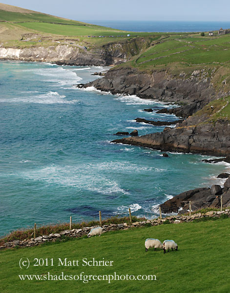 Dingle Cliffs, Ireland