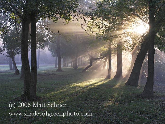 Sunrise through fog (H), Bucks County, Pa