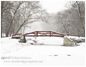 Delaware Canal in Snowstorm
